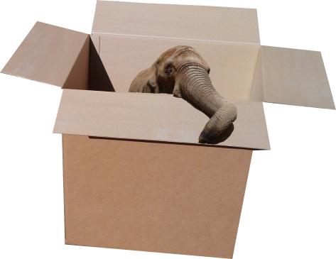 упакуем и слона